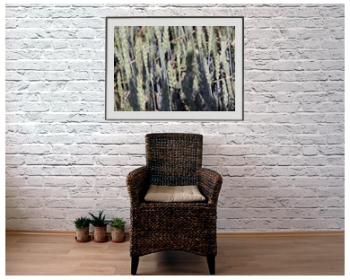 ArtAperture.net - Dar Wolfe - Hideaway - Organic - Organic scenery motifs combined with impressions of natural objects
