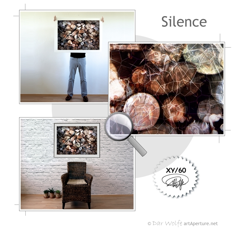 ArtAperture.net - Dar Wolfe - Silence - Organic - Organic scenery motifs combined with impressions of natural objects