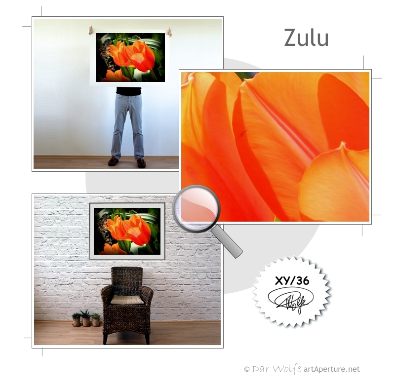 ArtAperture.net - Dar Wolfe - Zulu - Floral - Showcase of floral beauty achieved through a selective fusion of reality and art.