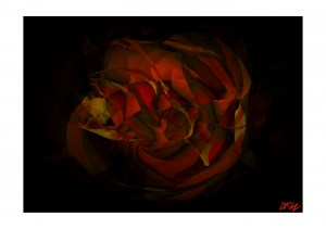 ArtAperture.net - Dar Wolfe - Perfect Harmony - Floral - Showcase of floral beauty achieved through a selective fusion of reality and art